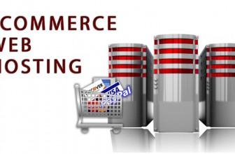 ¿Cómo Escoger un Web Hosting Para tu Tienda en Línea (Ecommerce)?